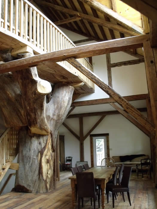 Tree base in the timber frame