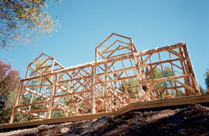 Timber framing - Standing tall and proud -  a fresh start
