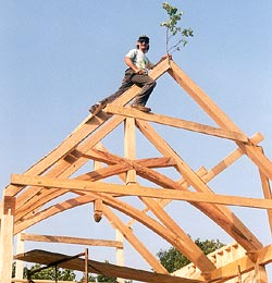 Timber framing - When the frame is up the branch goes on!
