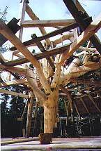 "Timber Framing - This is one elaborate ""tree fort"""